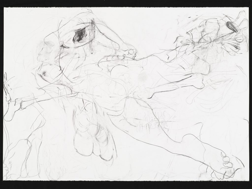 2008 - Skin of One's Teeth - 70x100 - Charcoal, pencil on paper