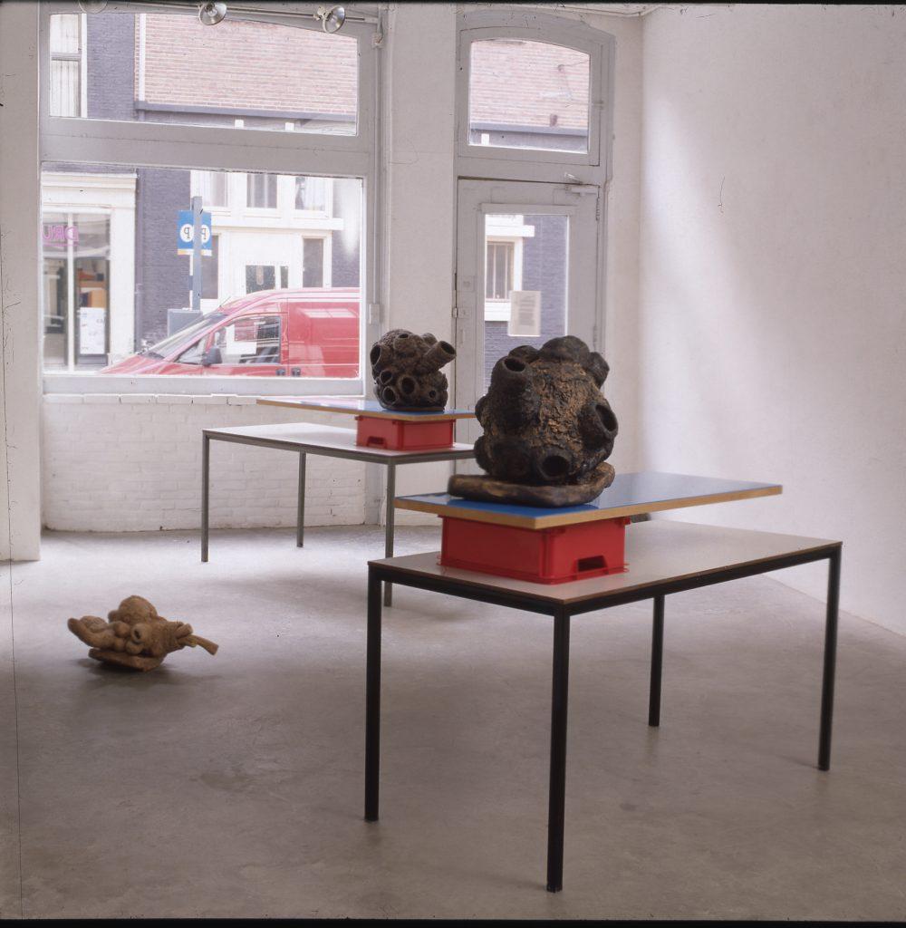 2001 - Foreign Bodies - Galerie De Witte Voet, Amsterdam